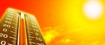 زیاد کردن ترشح هورمون استرس با گرم تر شدن هوا